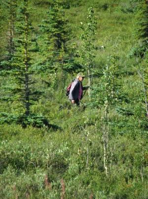 Denali Kantishna hike on tundra, Susan