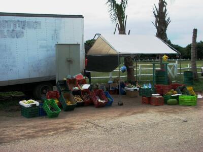 Placencia, Belize roadside veggie truck