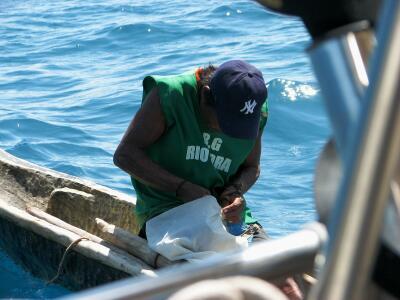 Kuna indian repairing sail